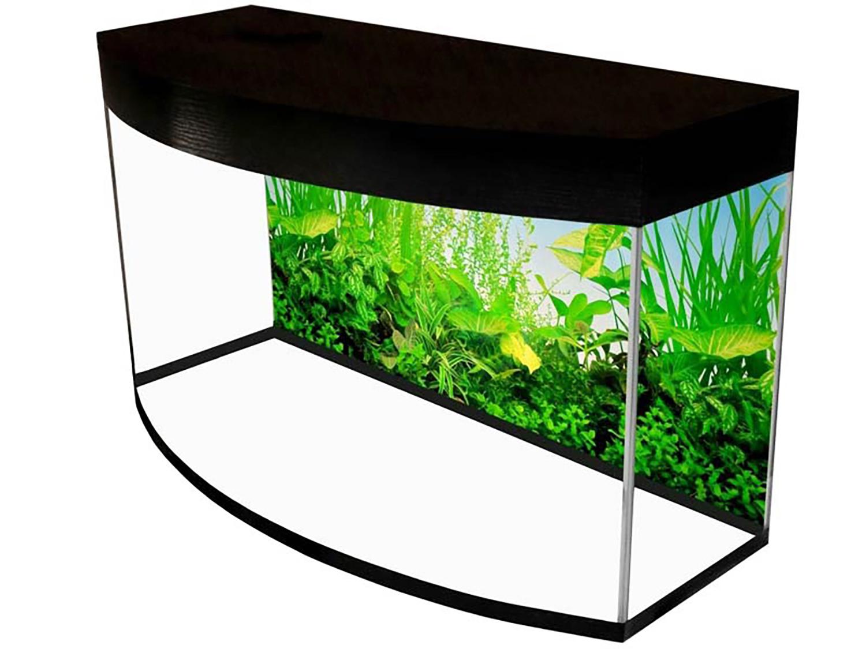 На изображении панорамный аквариум
